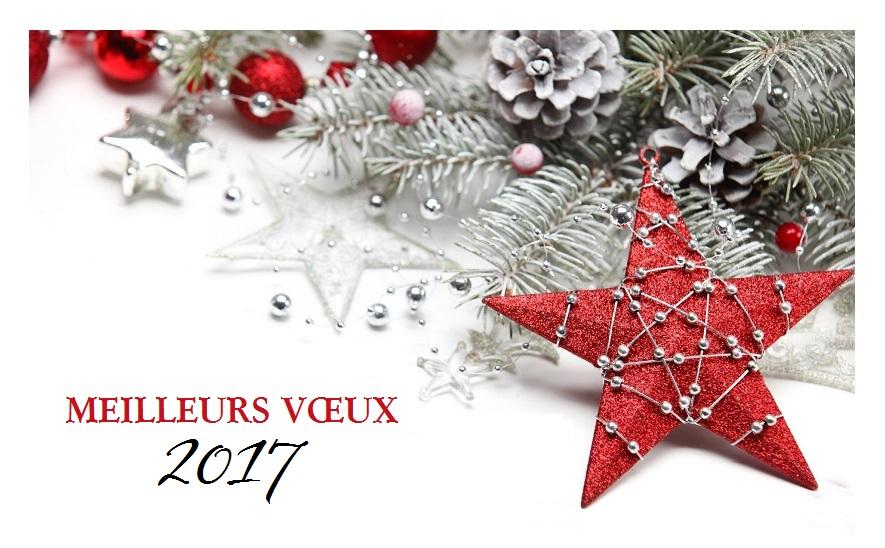 gratuite-carte-voeux-2017-imprimer-pour-famille-societes