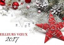 Meilleurs vœux 2017